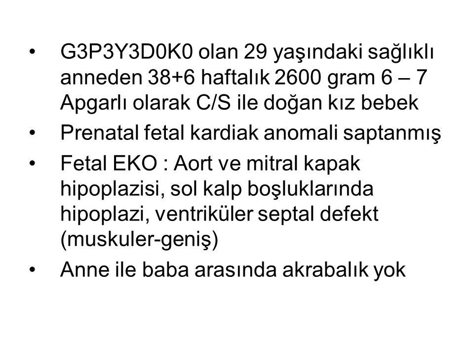 G3P3Y3D0K0 olan 29 yaşındaki sağlıklı anneden 38+6 haftalık 2600 gram 6 – 7 Apgarlı olarak C/S ile doğan kız bebek
