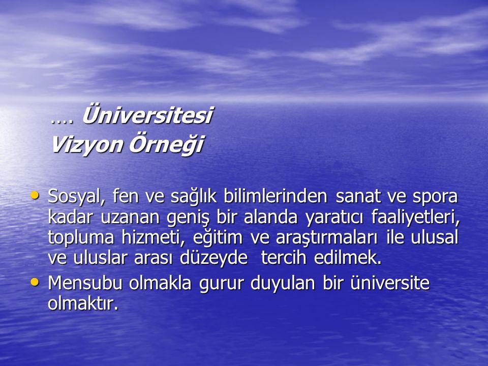 …. Üniversitesi Vizyon Örneği