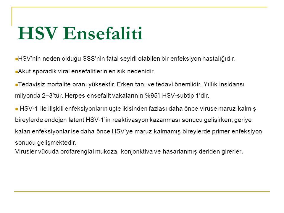 HSV Ensefaliti HSV'nin neden olduğu SSS'nin fatal seyirli olabilen bir enfeksiyon hastalığıdır. Akut sporadik viral ensefalitlerin en sık nedenidir.
