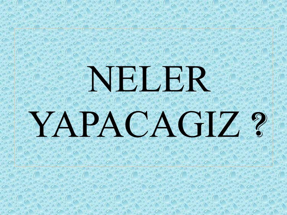 NELER YAPACAGIZ