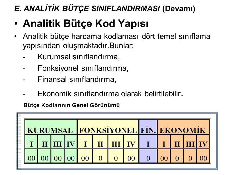 E. ANALİTİK BÜTÇE SINIFLANDIRMASI (Devamı)