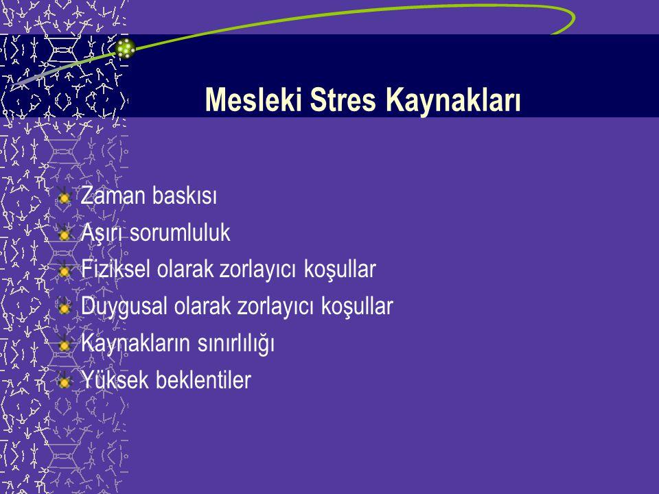 Mesleki Stres Kaynakları