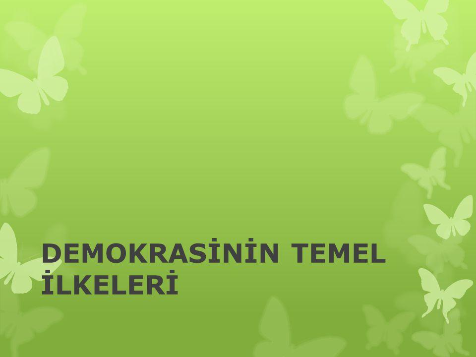 DEMOKRASİNİN TEMEL İLKELERİ