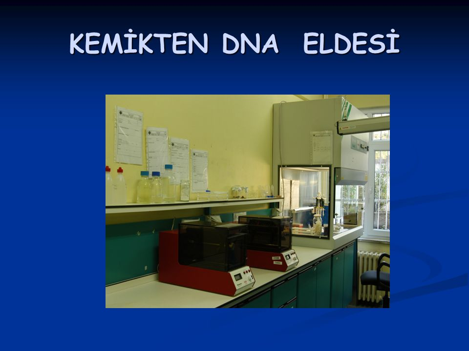 KEMİKTEN DNA ELDESİ