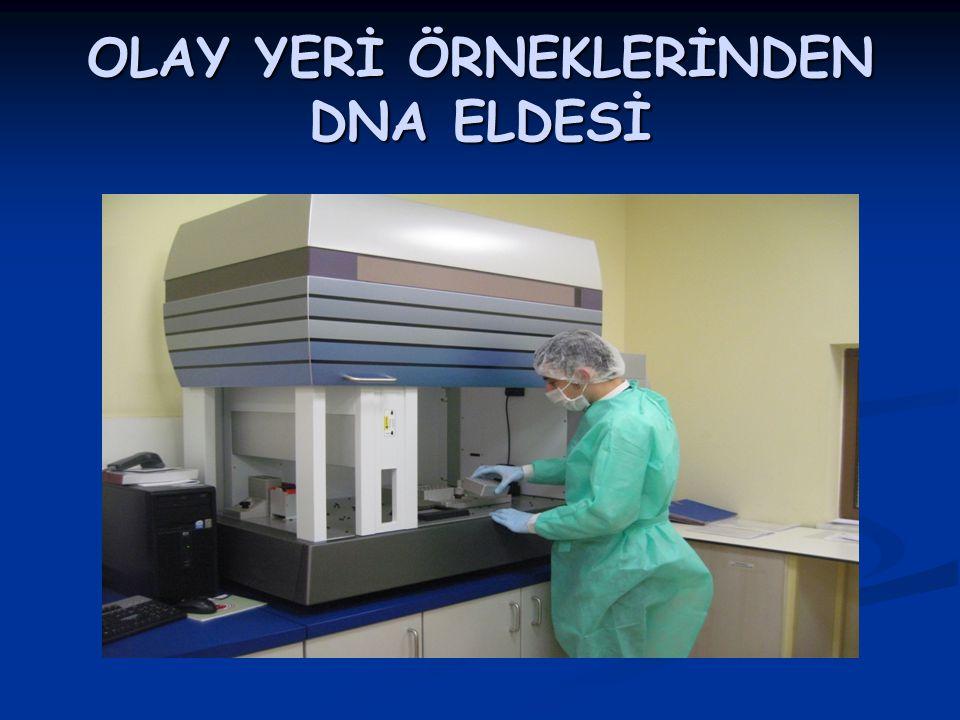 OLAY YERİ ÖRNEKLERİNDEN DNA ELDESİ