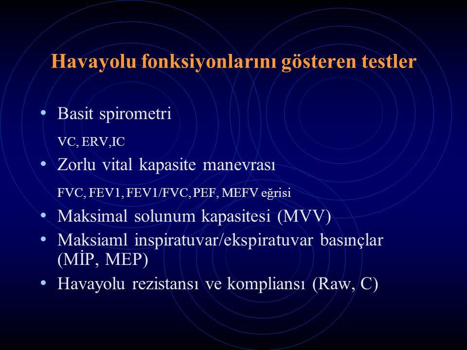 Havayolu fonksiyonlarını gösteren testler