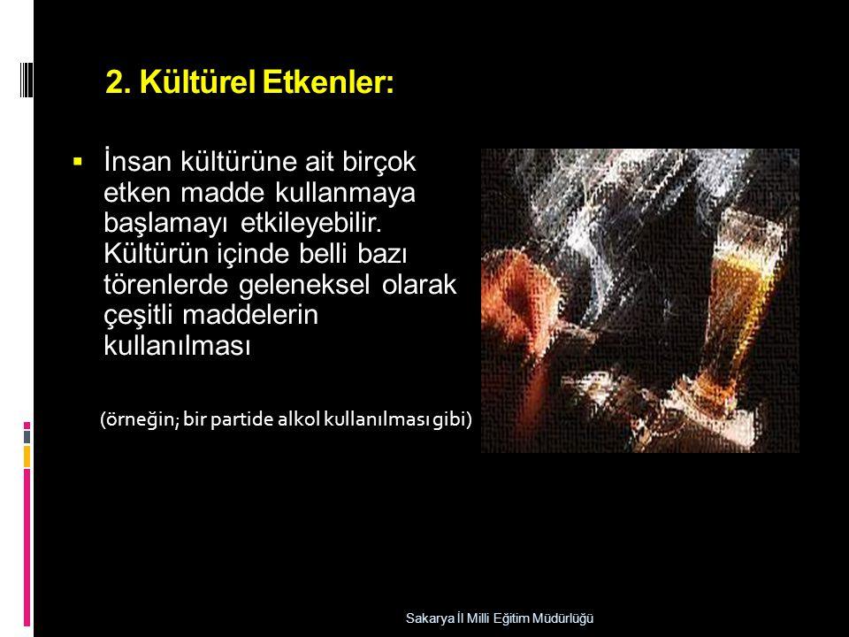 2. Kültürel Etkenler: