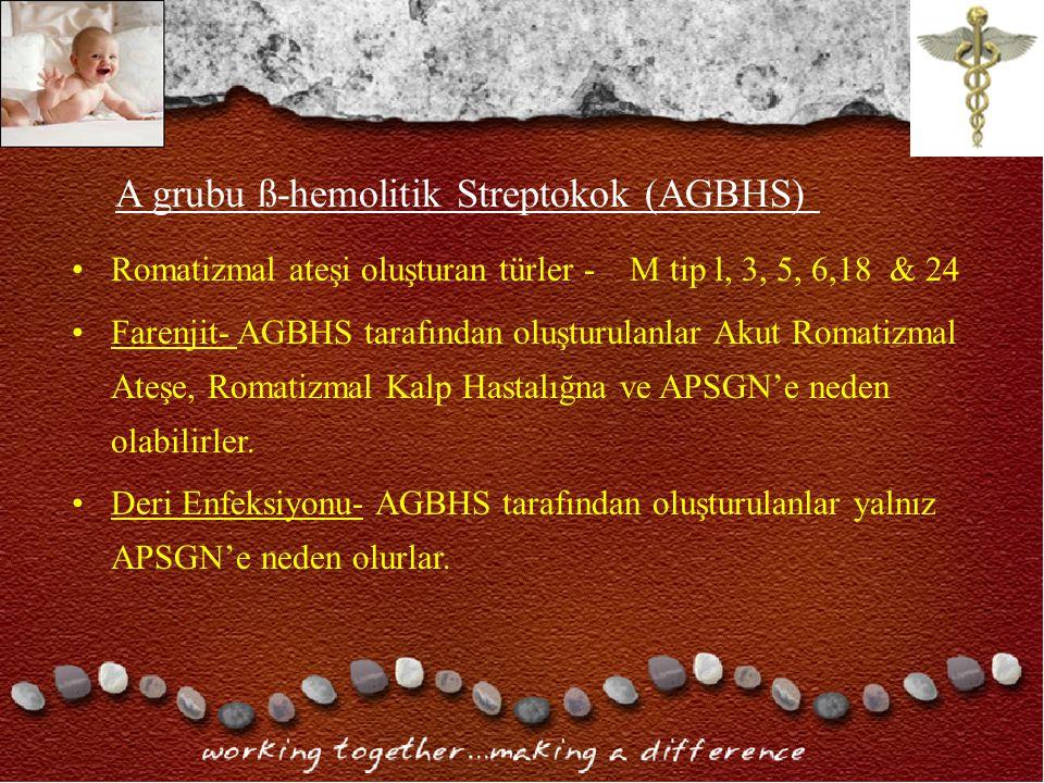 A grubu ß-hemolitik Streptokok (AGBHS)
