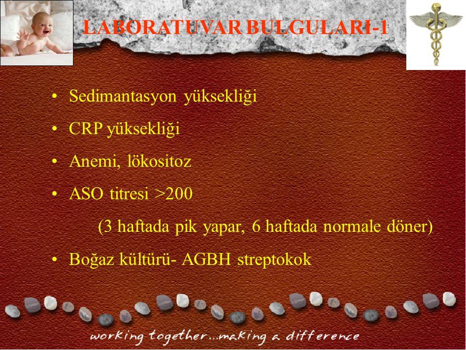 LABORATUVAR BULGULARI-1