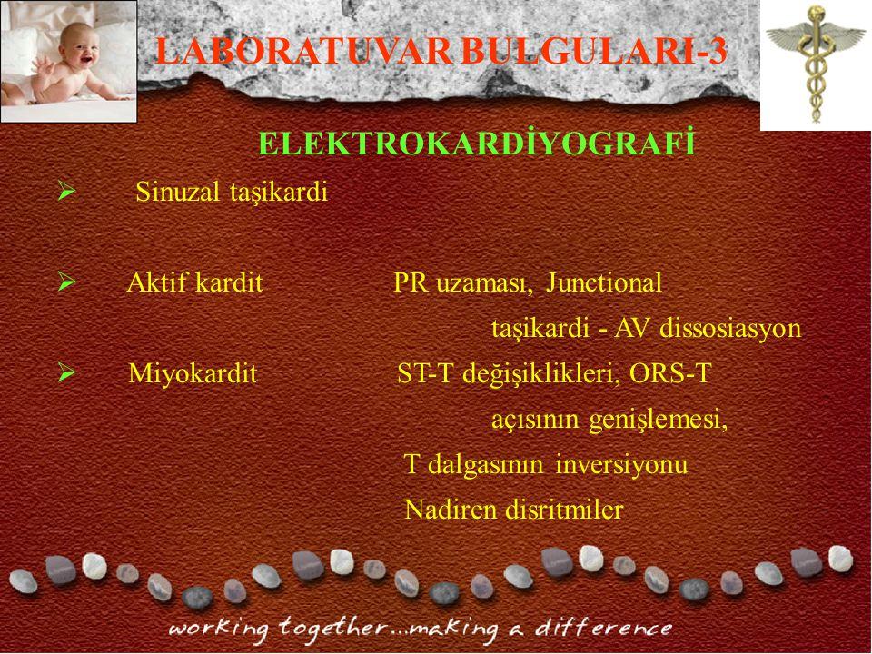 LABORATUVAR BULGULARI-3