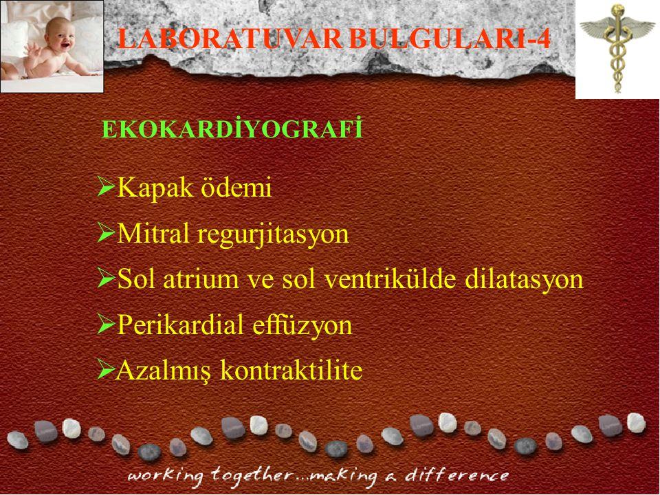 LABORATUVAR BULGULARI-4