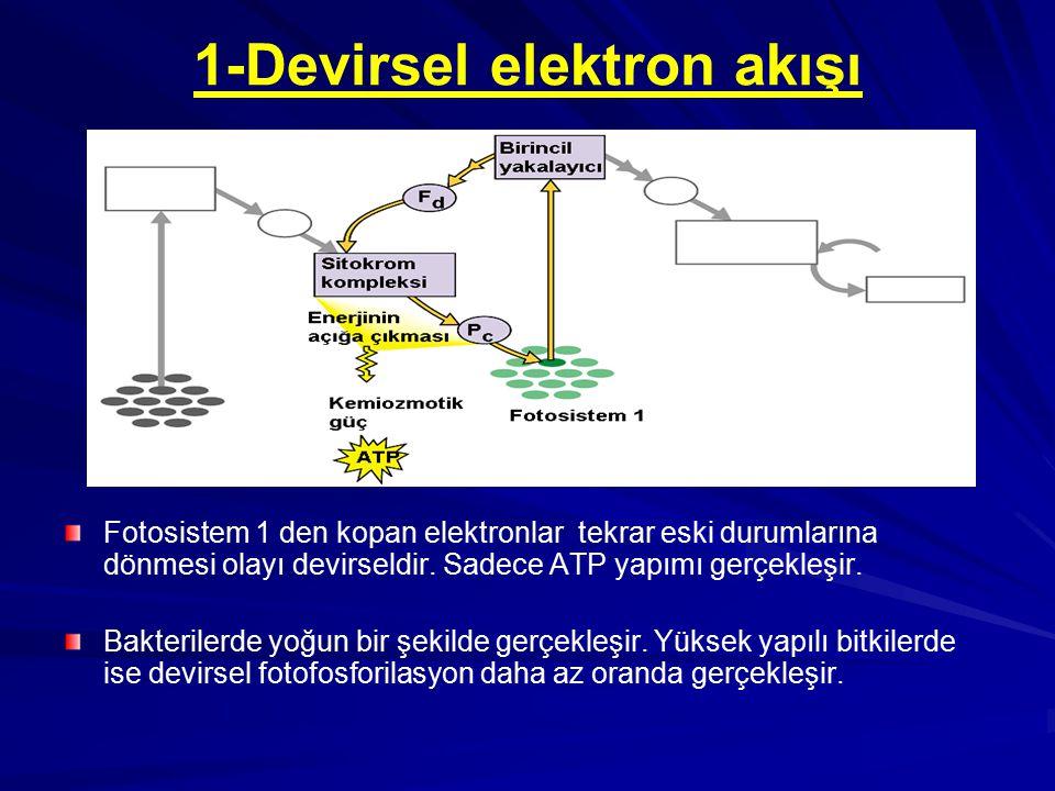 1-Devirsel elektron akışı