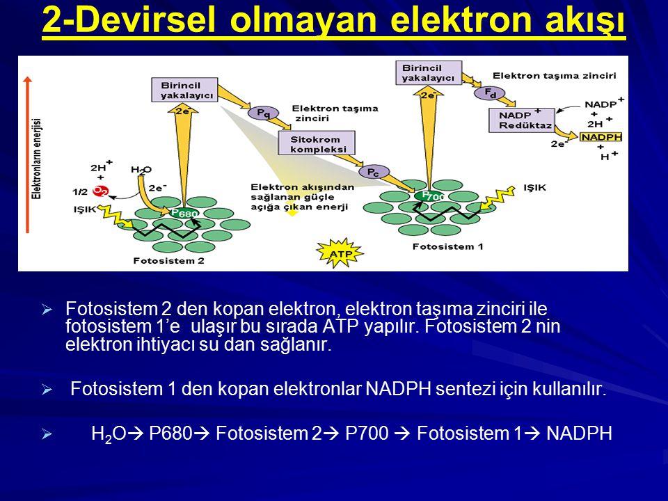 2-Devirsel olmayan elektron akışı