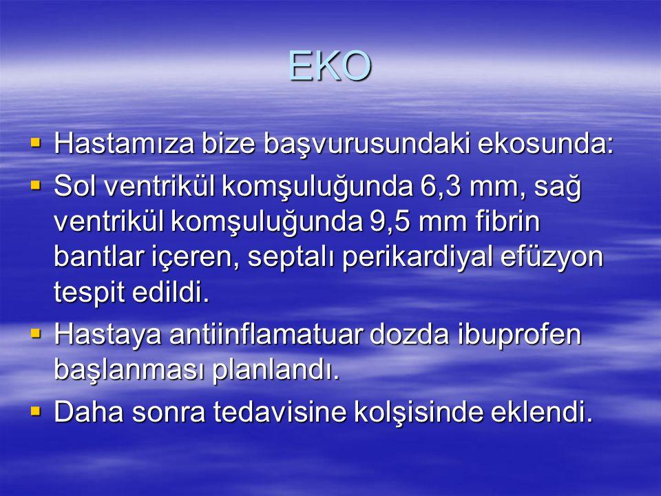 EKO Hastamıza bize başvurusundaki ekosunda: