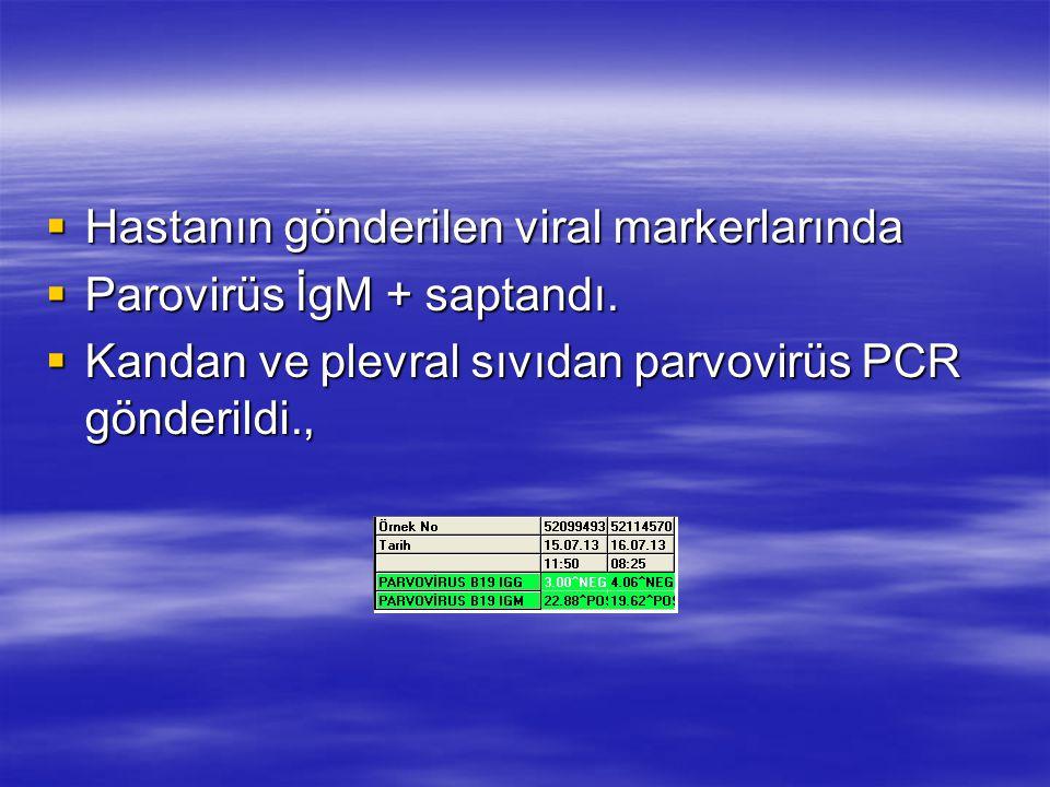 Hastanın gönderilen viral markerlarında