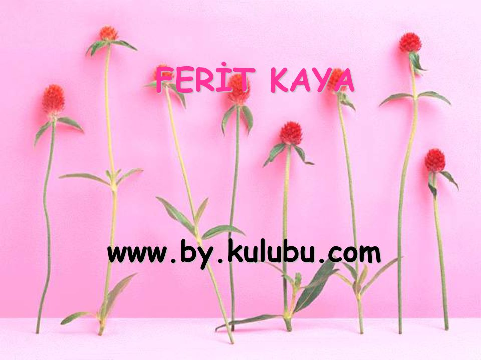 FERİT KAYA www.by.kulubu.com