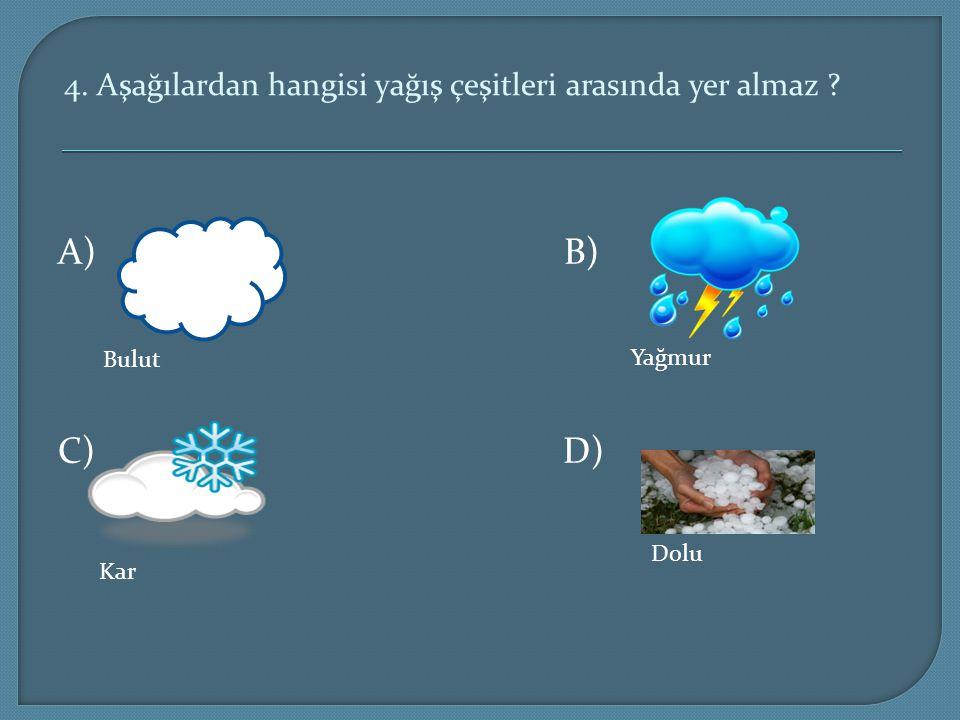 4. Aşağılardan hangisi yağış çeşitleri arasında yer almaz