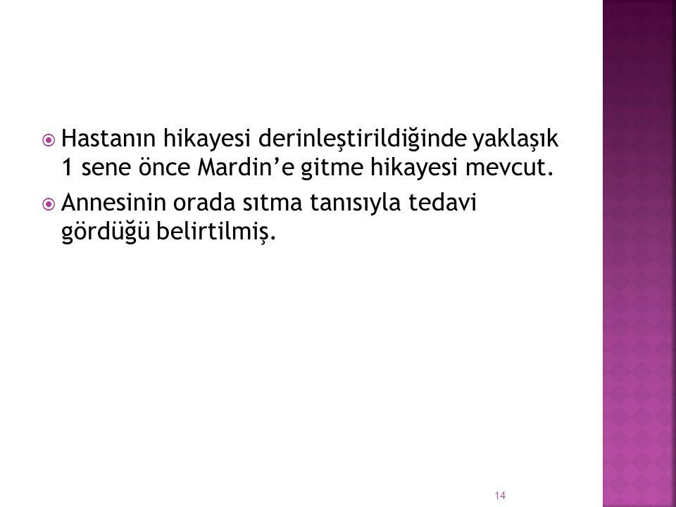 Hastanın hikayesi derinleştirildiğinde yaklaşık 1 sene önce Mardin'e gitme hikayesi mevcut.