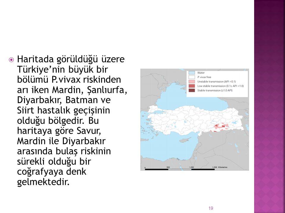 Haritada görüldüğü üzere Türkiye'nin büyük bir bölümü P