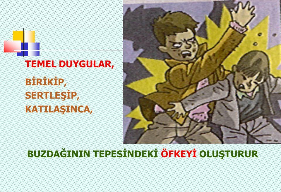 TEMEL DUYGULAR, BİRİKİP, SERTLEŞİP, KATILAŞINCA,