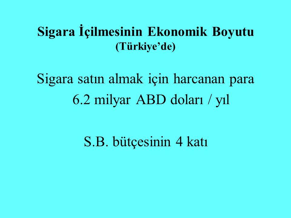 Sigara İçilmesinin Ekonomik Boyutu (Türkiye'de)