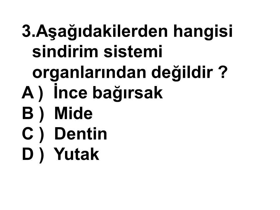 Aşağıdakilerden hangisi sindirim sistemi organlarından değildir