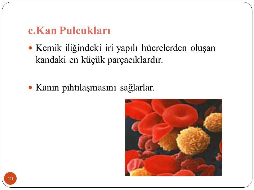 c.Kan Pulcukları Kemik iliğindeki iri yapılı hücrelerden oluşan kandaki en küçük parçacıklardır.
