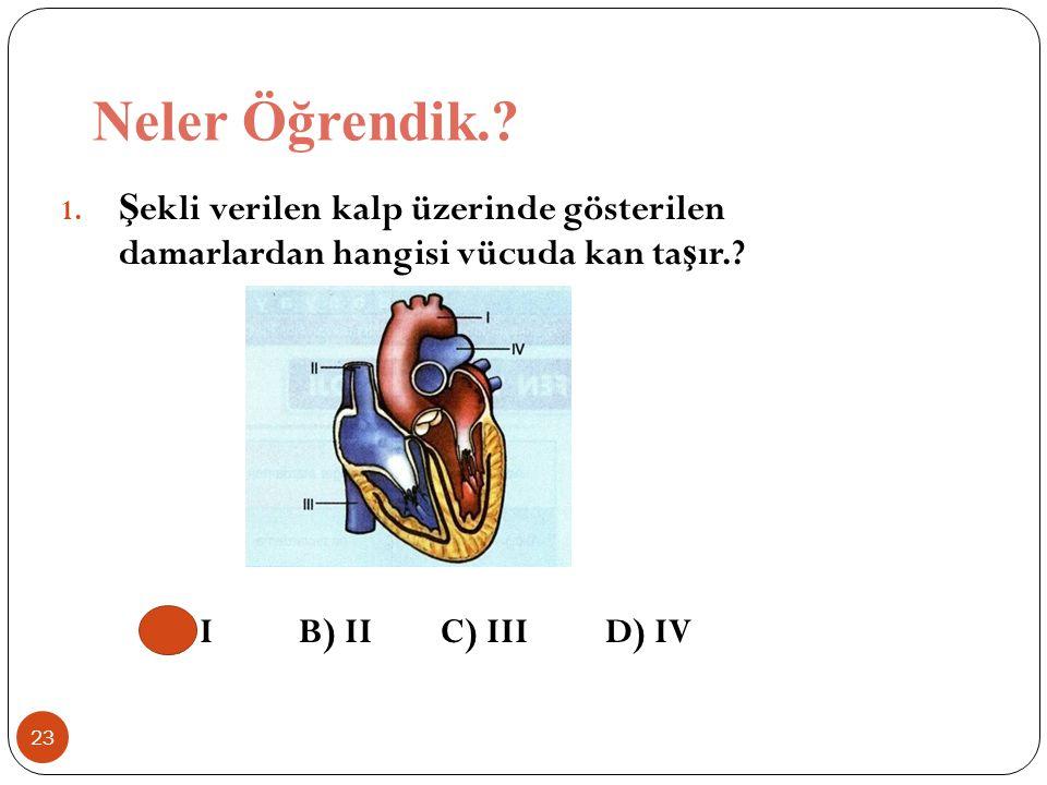 Neler Öğrendik.. Şekli verilen kalp üzerinde gösterilen damarlardan hangisi vücuda kan taşır..
