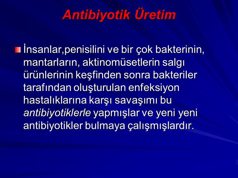 Antibiyotik Üretim