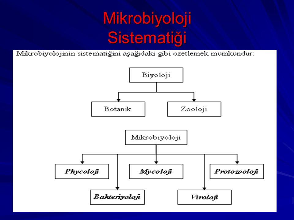 Mikrobiyoloji Sistematiği