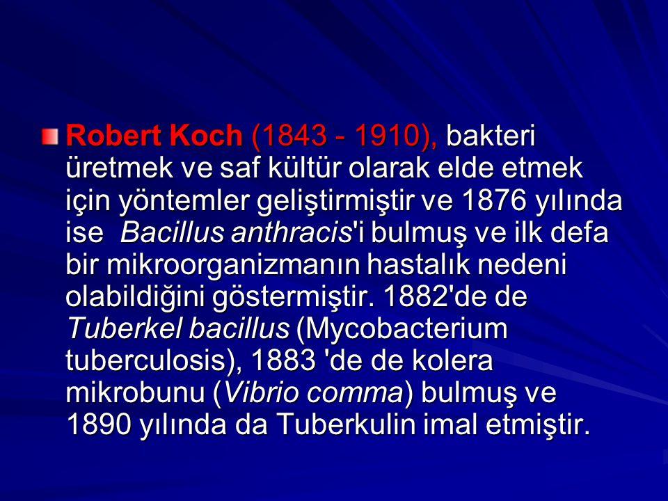 Robert Koch (1843 - 1910), bakteri üretmek ve saf kültür olarak elde etmek için yöntemler geliştirmiştir ve 1876 yılında ise Bacillus anthracis i bulmuş ve ilk defa bir mikroorganizmanın hastalık nedeni olabildiğini göstermiştir.