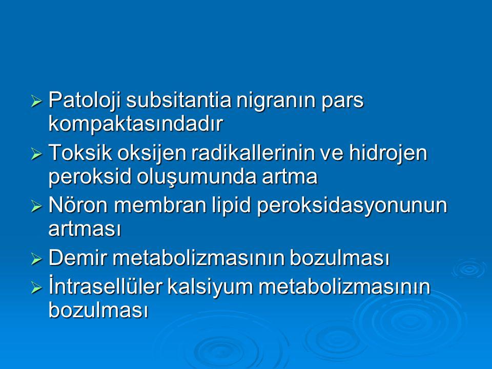 Patoloji subsitantia nigranın pars kompaktasındadır