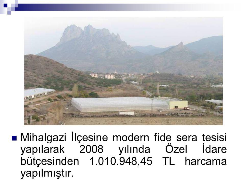 Mihalgazi İlçesine modern fide sera tesisi yapılarak 2008 yılında Özel İdare bütçesinden 1.010.948,45 TL harcama yapılmıştır.