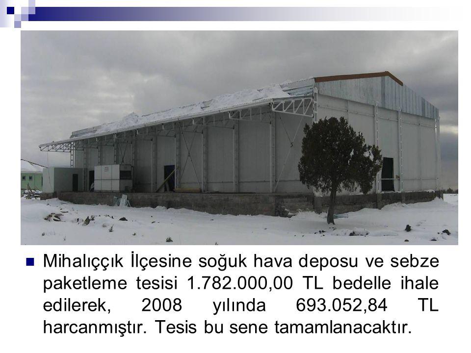 Mihalıççık İlçesine soğuk hava deposu ve sebze paketleme tesisi 1. 782
