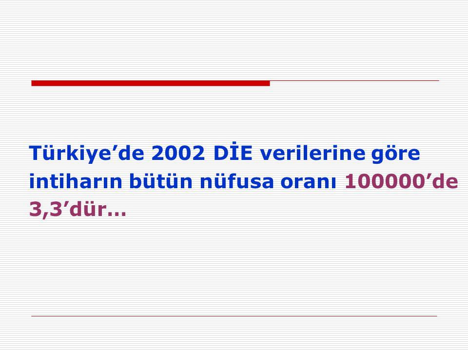 Türkiye'de 2002 DİE verilerine göre