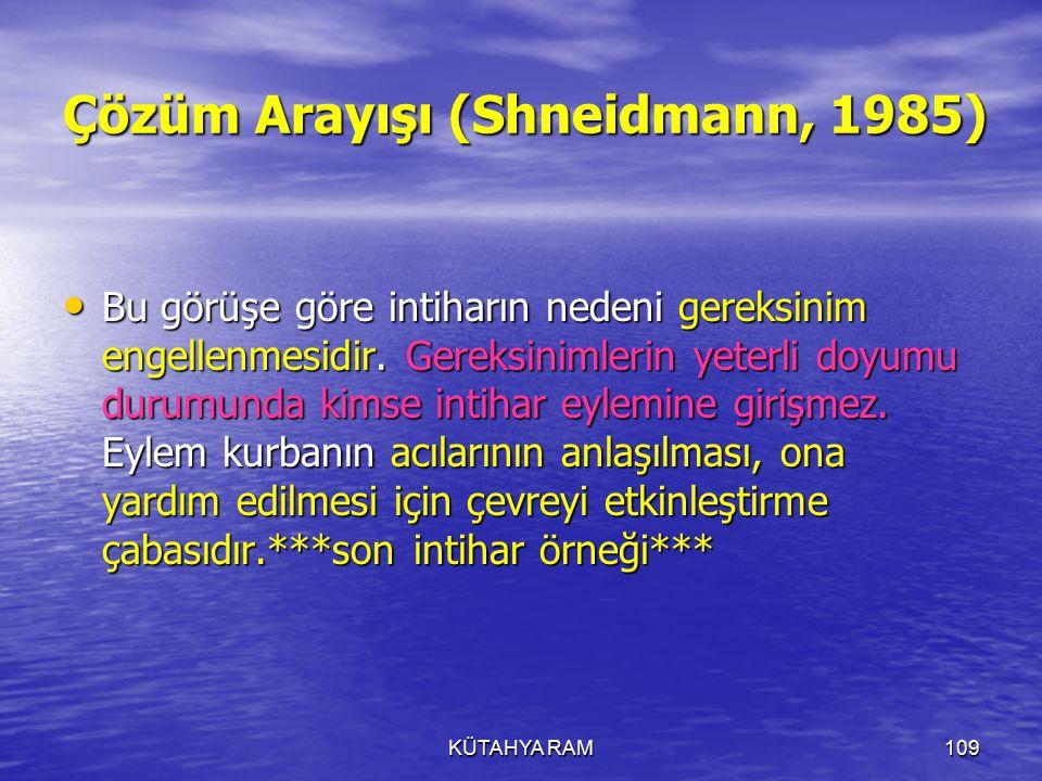 Çözüm Arayışı (Shneidmann, 1985)