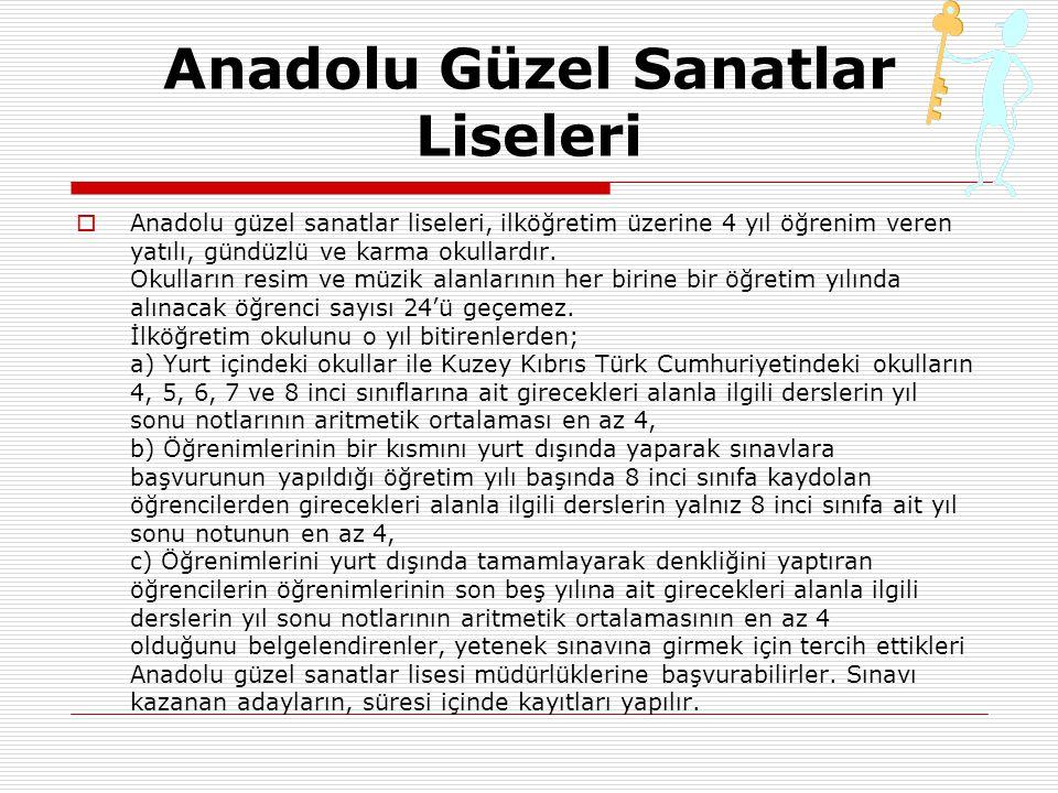 Anadolu Güzel Sanatlar Liseleri