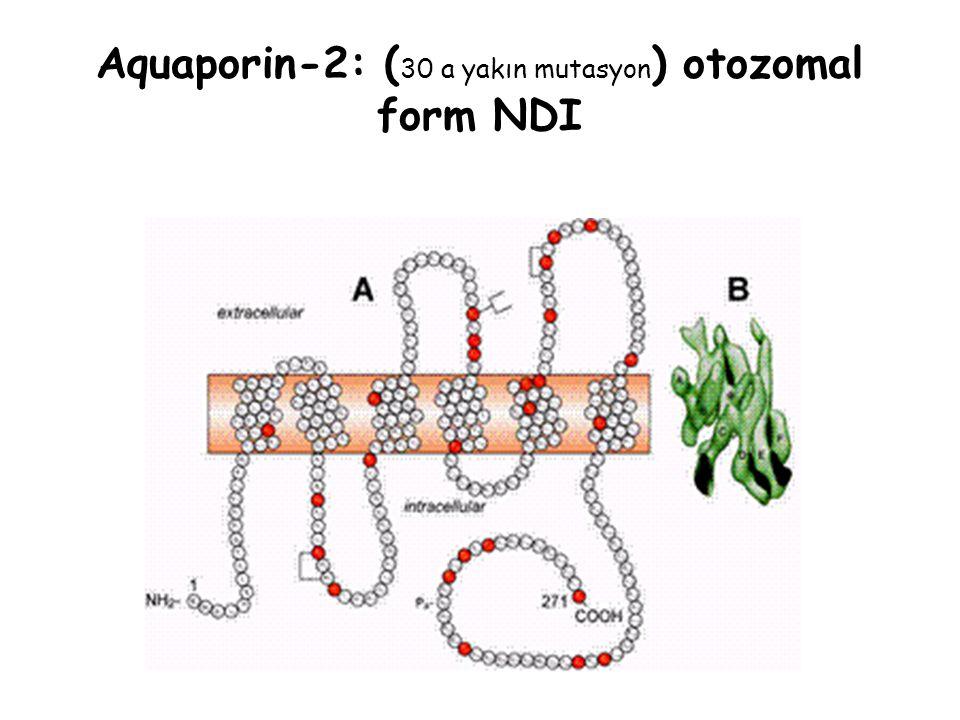 Aquaporin-2: (30 a yakın mutasyon) otozomal form NDI