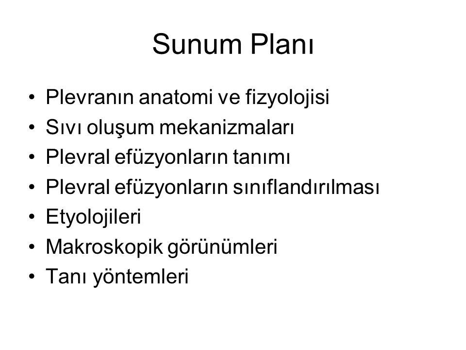 Sunum Planı Plevranın anatomi ve fizyolojisi Sıvı oluşum mekanizmaları