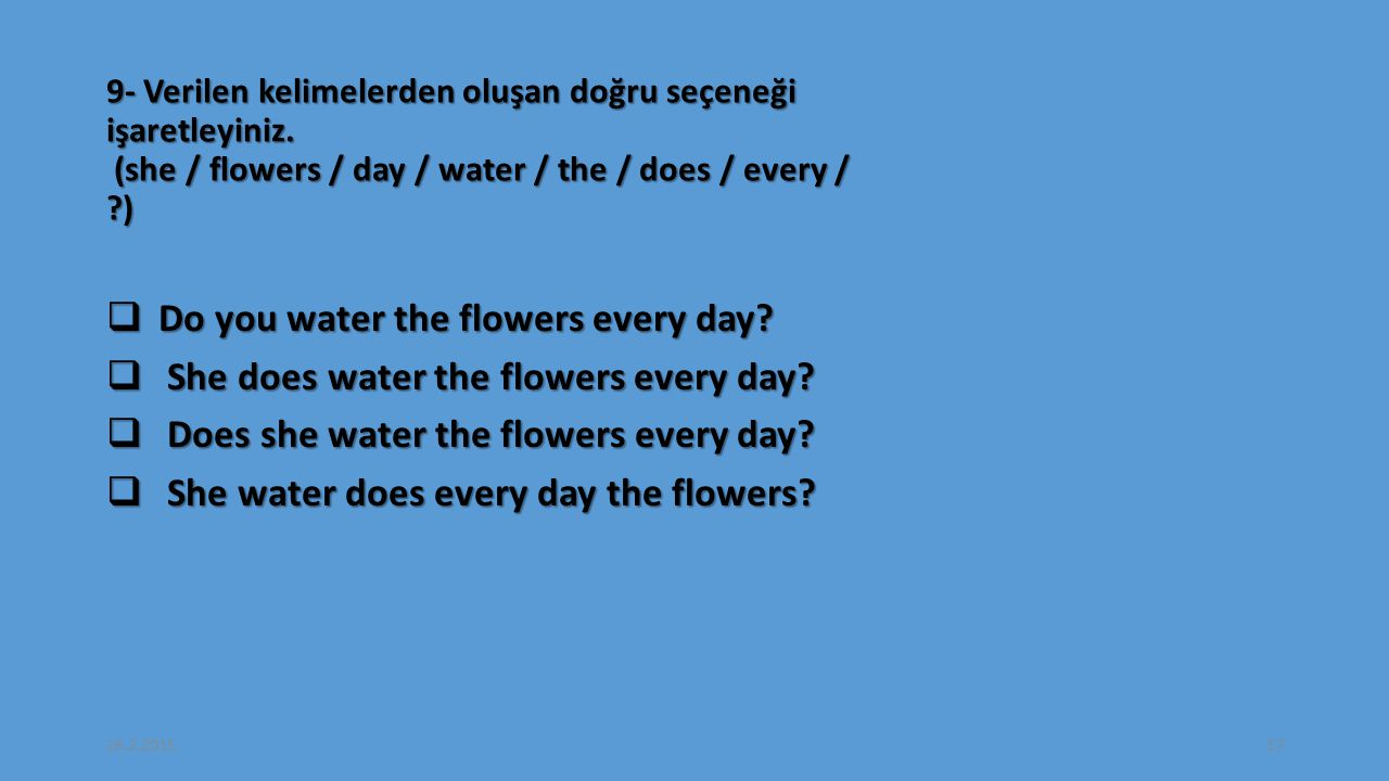 Do you water the flowers every day