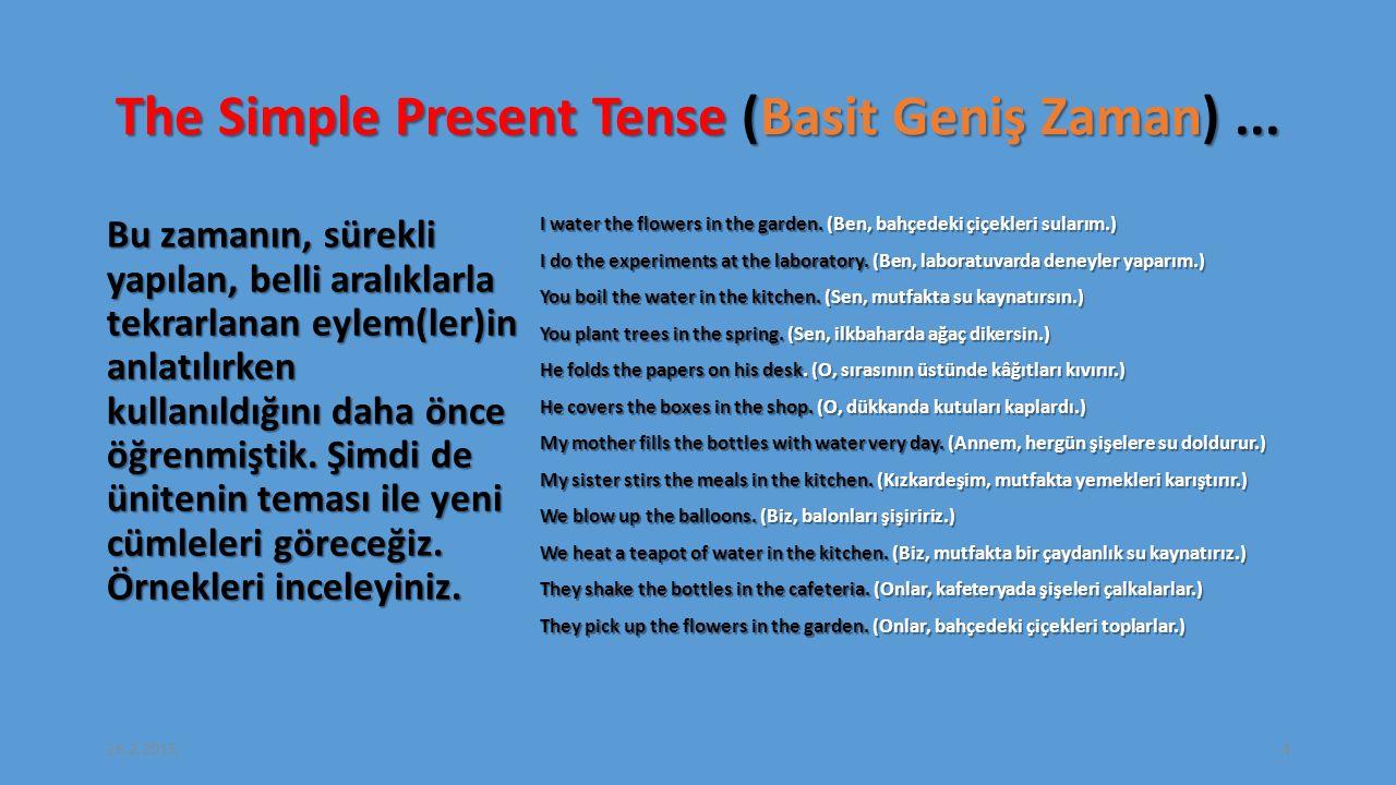 The Simple Present Tense (Basit Geniş Zaman) ...