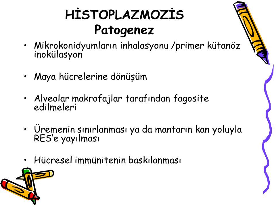 HİSTOPLAZMOZİS Patogenez