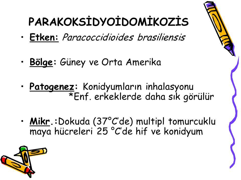 PARAKOKSİDYOİDOMİKOZİS