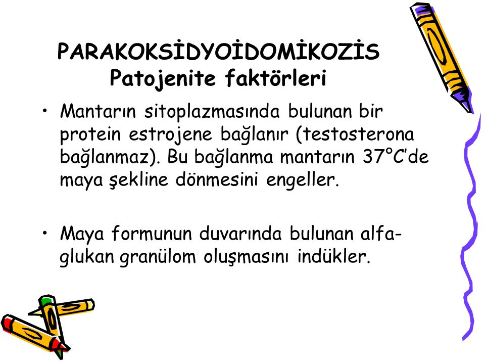 PARAKOKSİDYOİDOMİKOZİS Patojenite faktörleri
