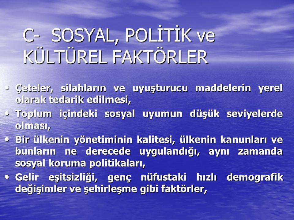 C- SOSYAL, POLİTİK ve KÜLTÜREL FAKTÖRLER