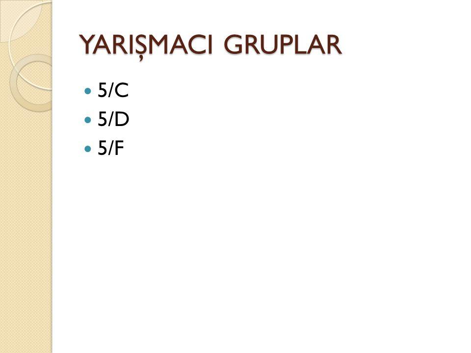 YARIŞMACI GRUPLAR 5/C 5/D 5/F