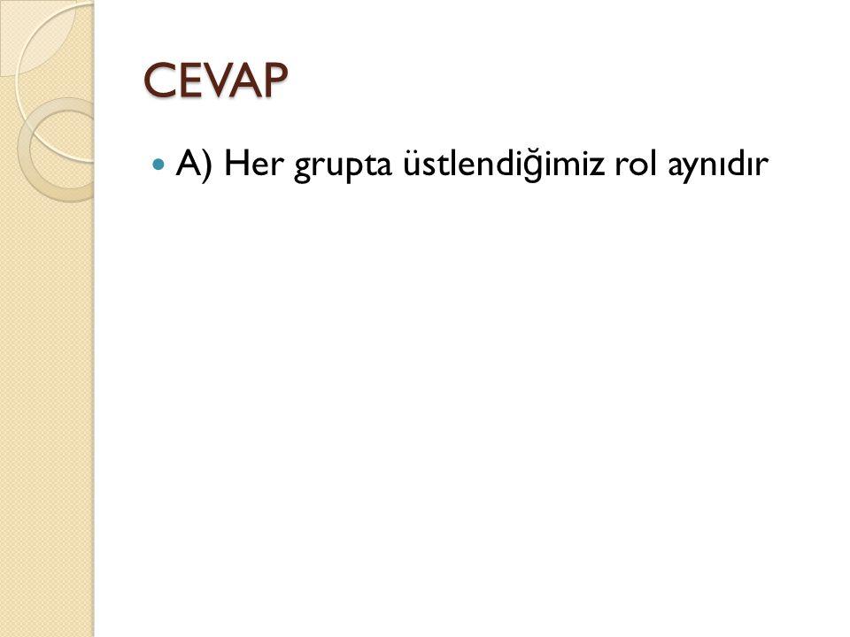 CEVAP A) Her grupta üstlendiğimiz rol aynıdır