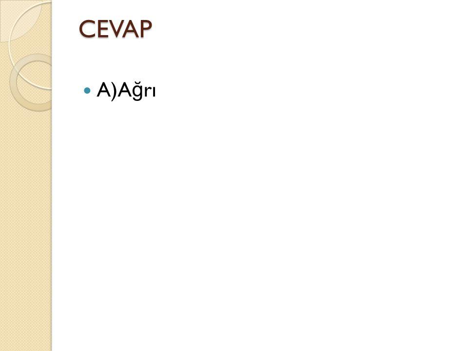 CEVAP A)Ağrı
