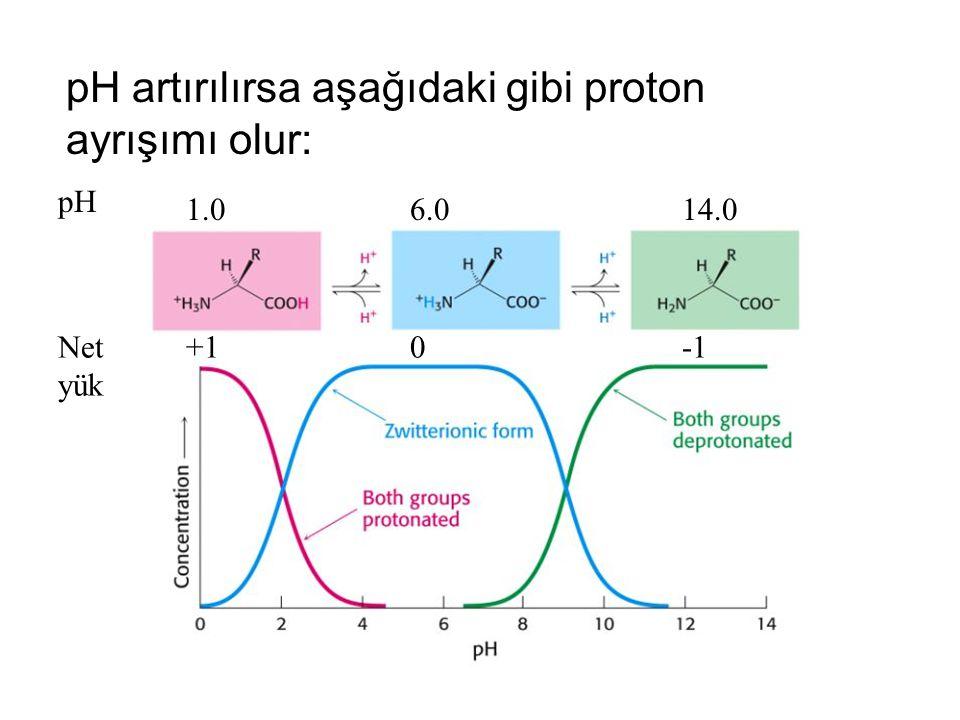 pH artırılırsa aşağıdaki gibi proton ayrışımı olur: