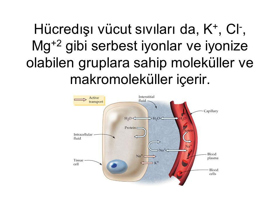Hücredışı vücut sıvıları da, K+, Cl-, Mg+2 gibi serbest iyonlar ve iyonize olabilen gruplara sahip moleküller ve makromoleküller içerir.